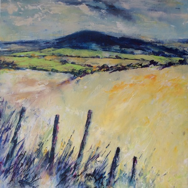 """Fields of Knocklayde""  70x70 cms.  Available at Gallery 1608, Bushmills."